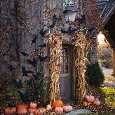 Harvest vs. Halloween Decor: Our Favorites for Both