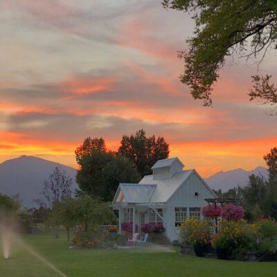 Springtime in Montana | Teresa's Greenhouse